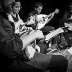 MelisMandolin Quartet (4)
